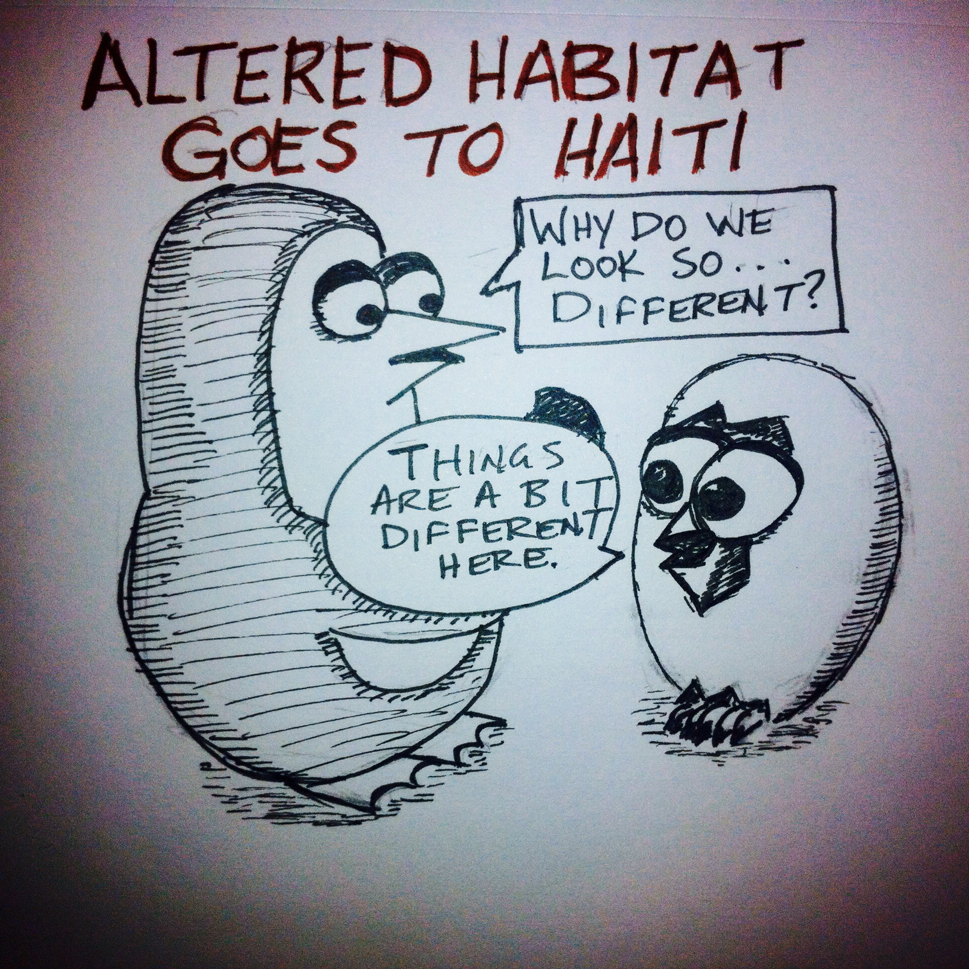 Altered Habitat goes to Haiti